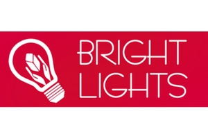 Bright Lights and Interiors Logo